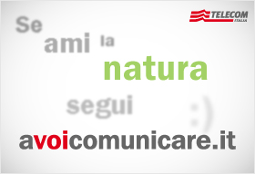 AVC-ecozoom.jpg